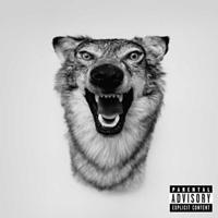 aYelawolf