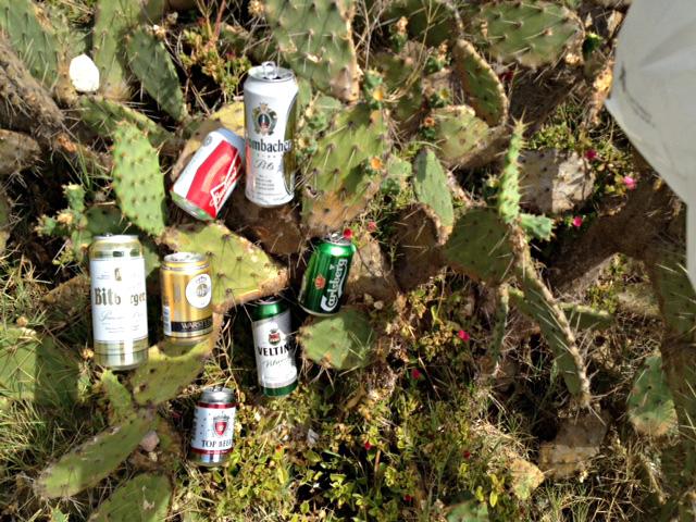 øl-og-kaktus